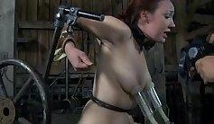 Bondage sex slave Aftermath, Mia
